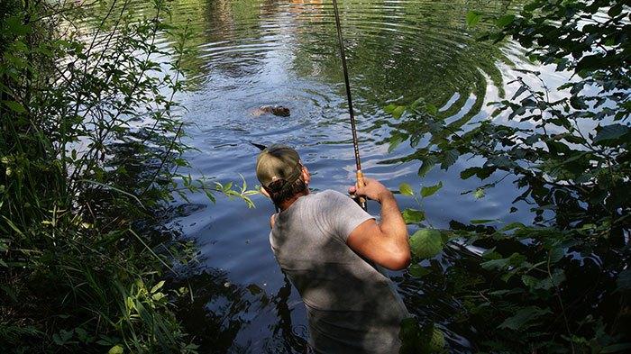 Struinen, een mooie manier van karpervissen, maar tussen de 'bush' heb je wél een verhoogd risico op teken! Foto: Roy Haghuis.
