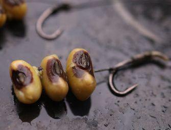 Karpervissen met alternatief aas: Black Eye beans