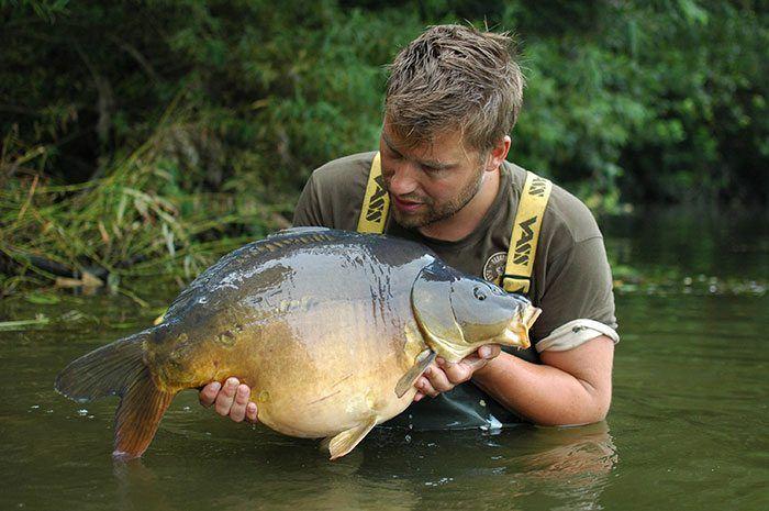Aan gevarieerde vissen geen gebrek. Check deze kogelronde spiegel.