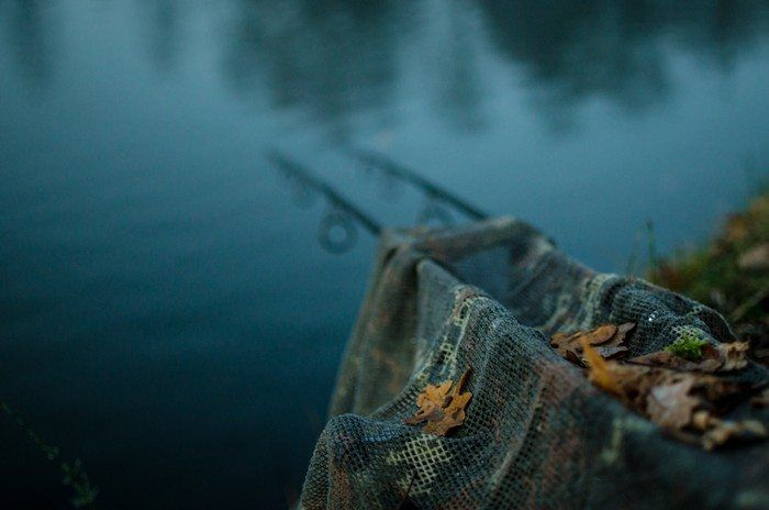Het najaar, een prachtige periode om op jacht te gaan naar de dikbuikige karpers die zich opmaken voor de winter.