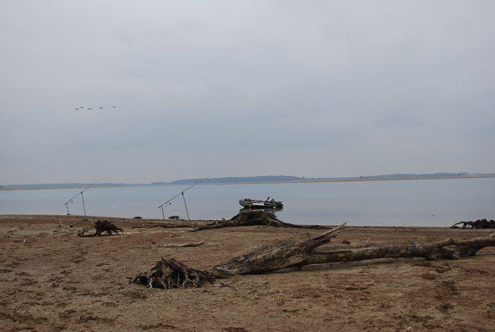 Lac-du-Der-karpervissen-20