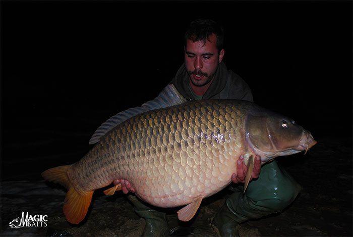 Lac-du-Der-karpervissen-21