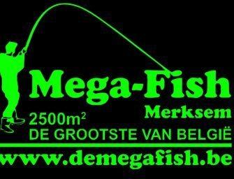 Opendeurdagen bij Mega Fish