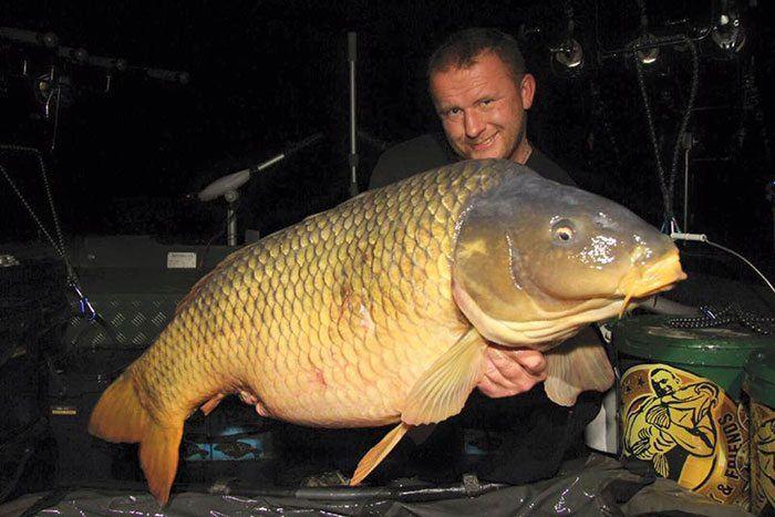 De topvis van het water: een schub van 28 kg+. Reken maar dat alle deelnemers loeren op een vangst van dit kaliber.