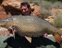 Topfilmpjes: Ebro adventures en voorjaarsvisserij van Mario Gijbels en Mark Hofman