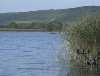 Karpervissen op Lac de Madine met Bart Vloet