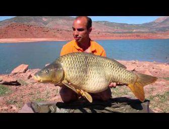 Een uniek karper avontuur in Marokko