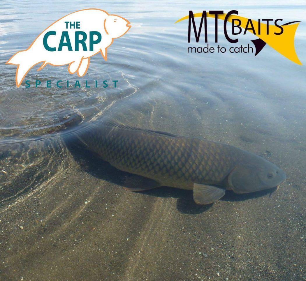 mtc-vroegboekactie-the-carp-specialist-header