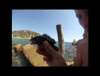 Korstvissen op Ibiza met Robert Grootenboer