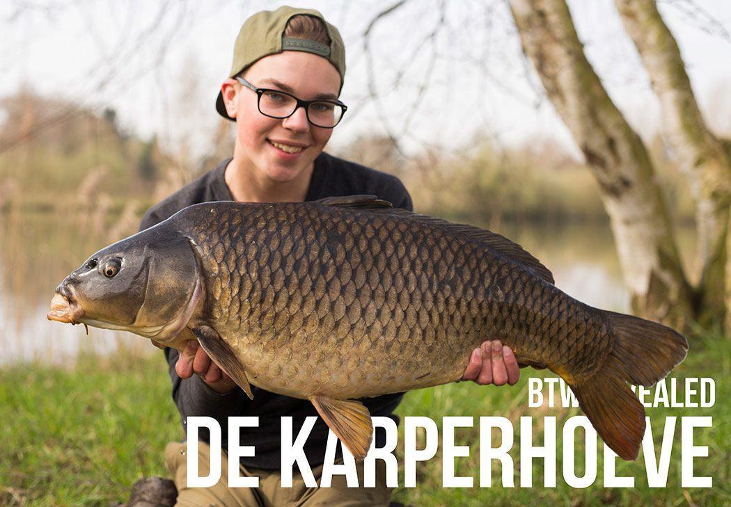 btw-revealed-karperhoeve-header