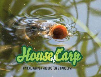 5 handige (en scherpe) SUMMER DEALS van House of Carp!