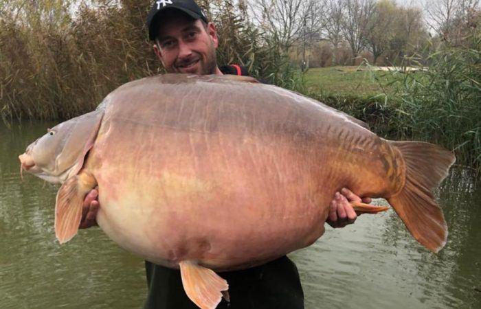 BREAKING: Nieuw wereldrecord gevangen op Euro Aqua: 51,2kg – LIVESTREAM