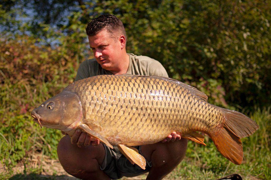 KWO Podcast #11 – Pieter van de Werfhorst over zijn jeugd, riviervissen in Frankrijk en zijn werk!