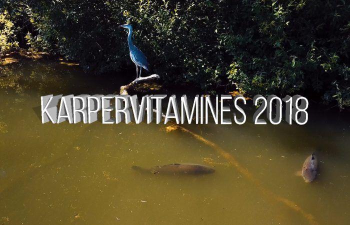 Karpervitamines – Jaaroverzicht – Willem Kwinten