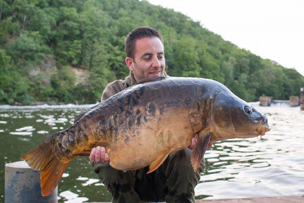 KWO Podcast #14 | Joachim Stelma over KWO, Lot of Carp en riviertechnieken in Frankrijk