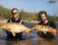 TOPVIDEO: Sloveens avontuur met Willem Kwinten & Wesley Vroom
